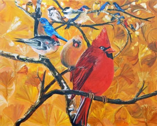 Birder Heaven Med